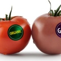 转基因及动物源性食品检测