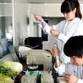 锐德检测食品中重金属污染物(铅、汞、镉、砷)的检测