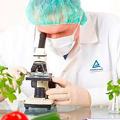 分析方法学验证单位-食品医药保健品分析方法学验证机构-国联质检