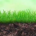 华标测土壤、植物同位素检测