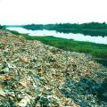 广东省工业分析检测中心+固体废物检测