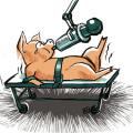 拓维检测饲料添加剂与预混料检测