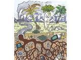 拓维检测土壤重金属检