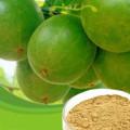 锐德检测食品添加剂罗汉果甜苷的检测