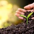 土壤、固废检测