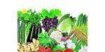食品中的农药残留检测