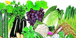深圳第三方农产品检测农产品快速检测农贸市场蔬菜检测机构--深圳中检联检测有限公司