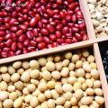食品中营养成分检测分析