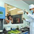 食品检测重金属