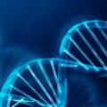法医毒物与生物材料检测