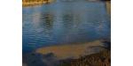 地表水水质检测_地表水常规检测