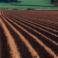土壤、沉积物、固体废弃物