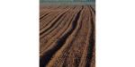 土壤重金属污染检测